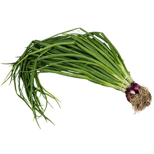 Spring Onion 1 Kg (हरा प्याज)