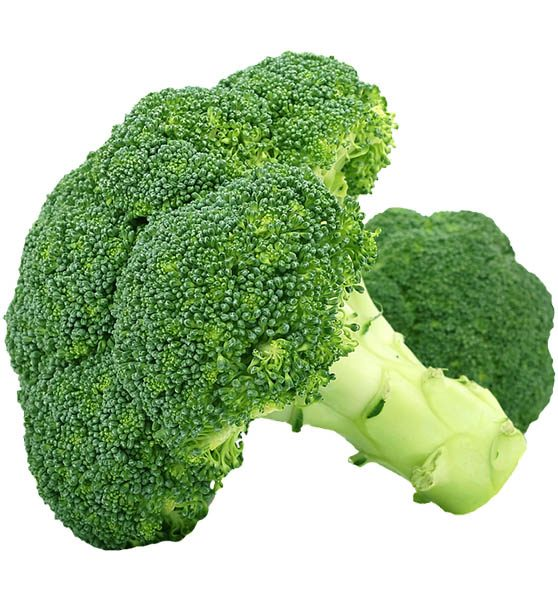 Broccoli 500 Gm (ब्रोकोली - બ્રોકોલી)