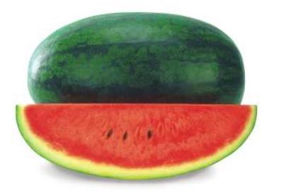 Tarabooj 1 Pcs (तरबूज - Watermelon Big)
