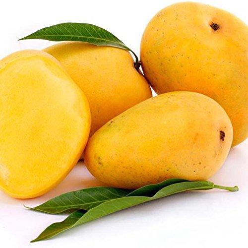 Keri 1 kg (आम - Mango, Devgad)