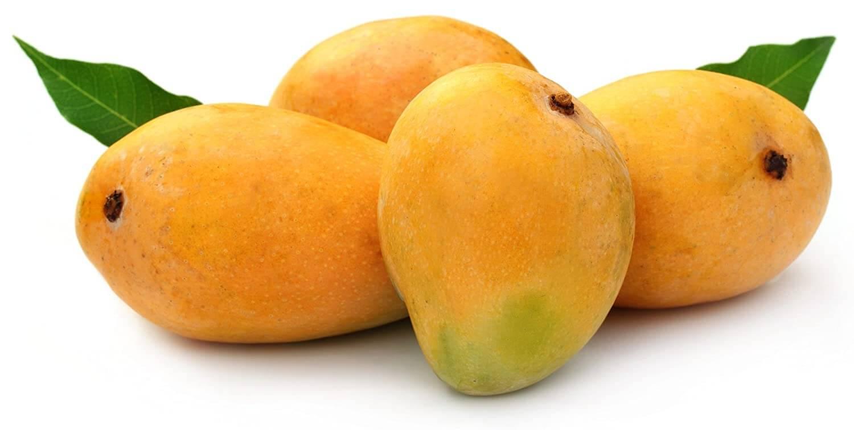 Alphonso Mango Large 1 Dozen (आम - કેરી)