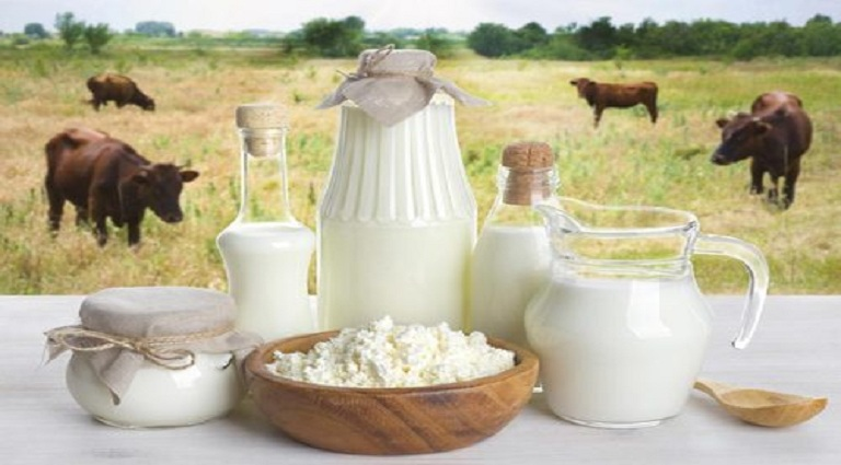 Krishna Dairy Background