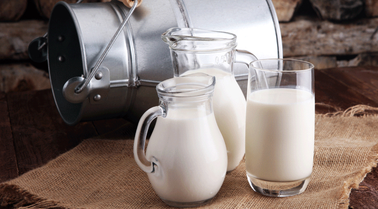 Shanti Dairy Background