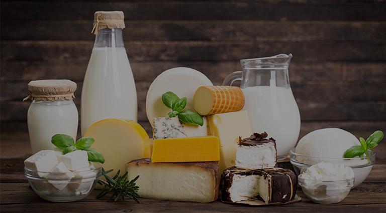 Shree Chamunda Dairy Farm Background