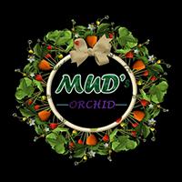 Mud Orchid Logo