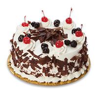 Festive The Cake Shop Logo