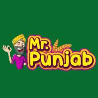 Mr. Punjab Logo