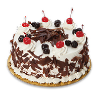 Cake & Spoon Logo