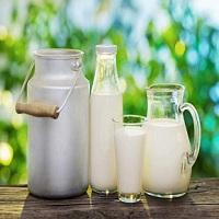 Vishal Dairy Logo