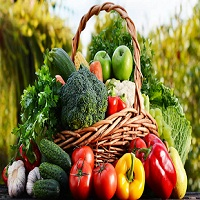 Kgn Vegetables Logo