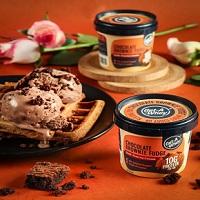 Ami Natural Kothi Ice Cream Logo