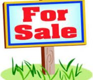Agriculture plots in bahadurgarh,plots land for sale...