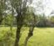 Residential Land For Sale At Cherthala, Alappuzha