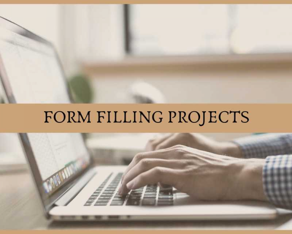 Offline Data Entry Projects In Andhra Pradesh