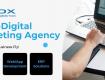 Digital Marketing Services Chandigarh   Social Media Marketing Company Chandigarh