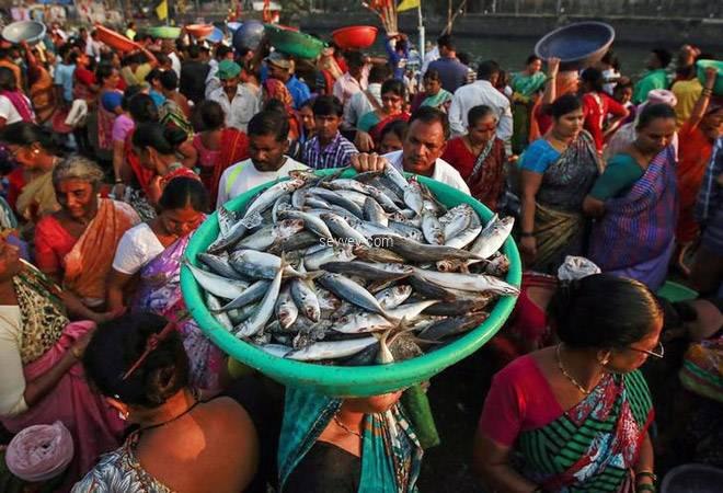 Salt-water-Tuna fish-market