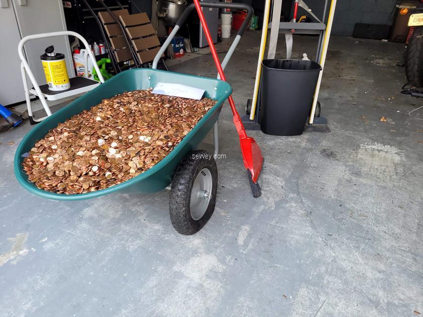 coin-salary