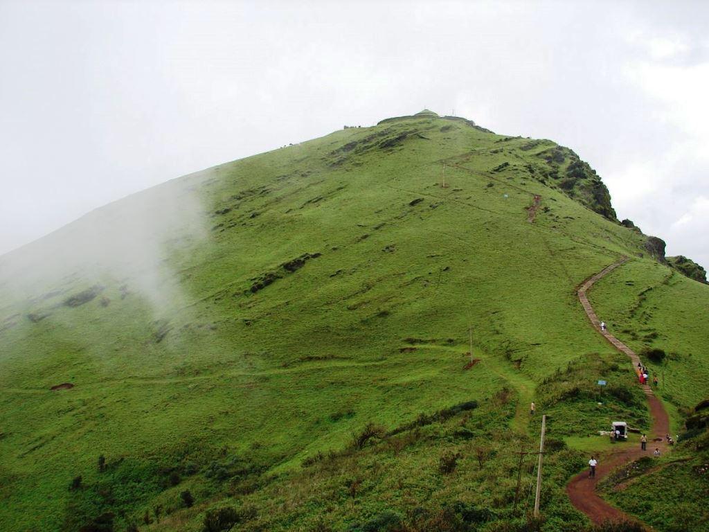 Trekkerpedia.com.jpg