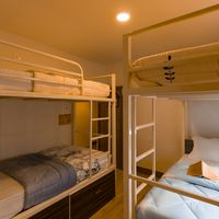 Hostel Mixed Dorm