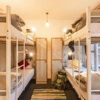 Comfortable dorms at Zostel Mukteshwar