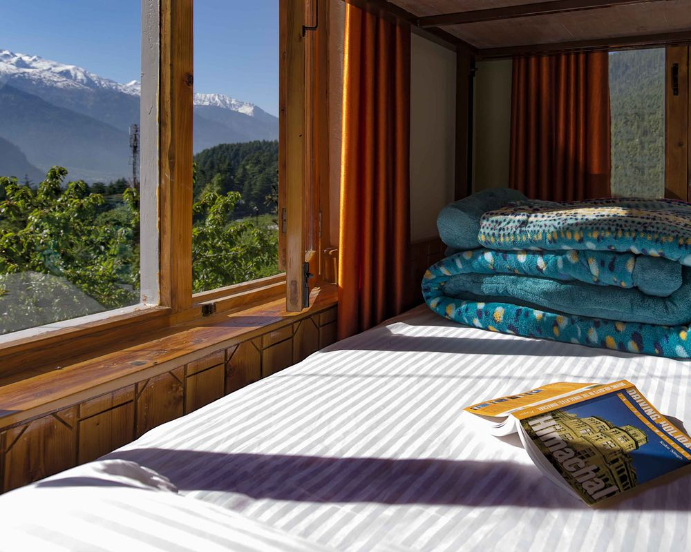 Zostel Manali Top Rated Branded Hostel In Manali
