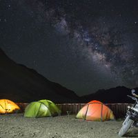 Spot Milky from our Spiti hostel compound