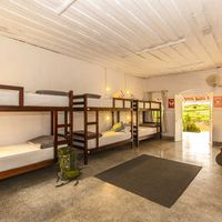 Big dormitories at Zostel Wayanad