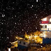 Snow view of Zostel Mukteshwar
