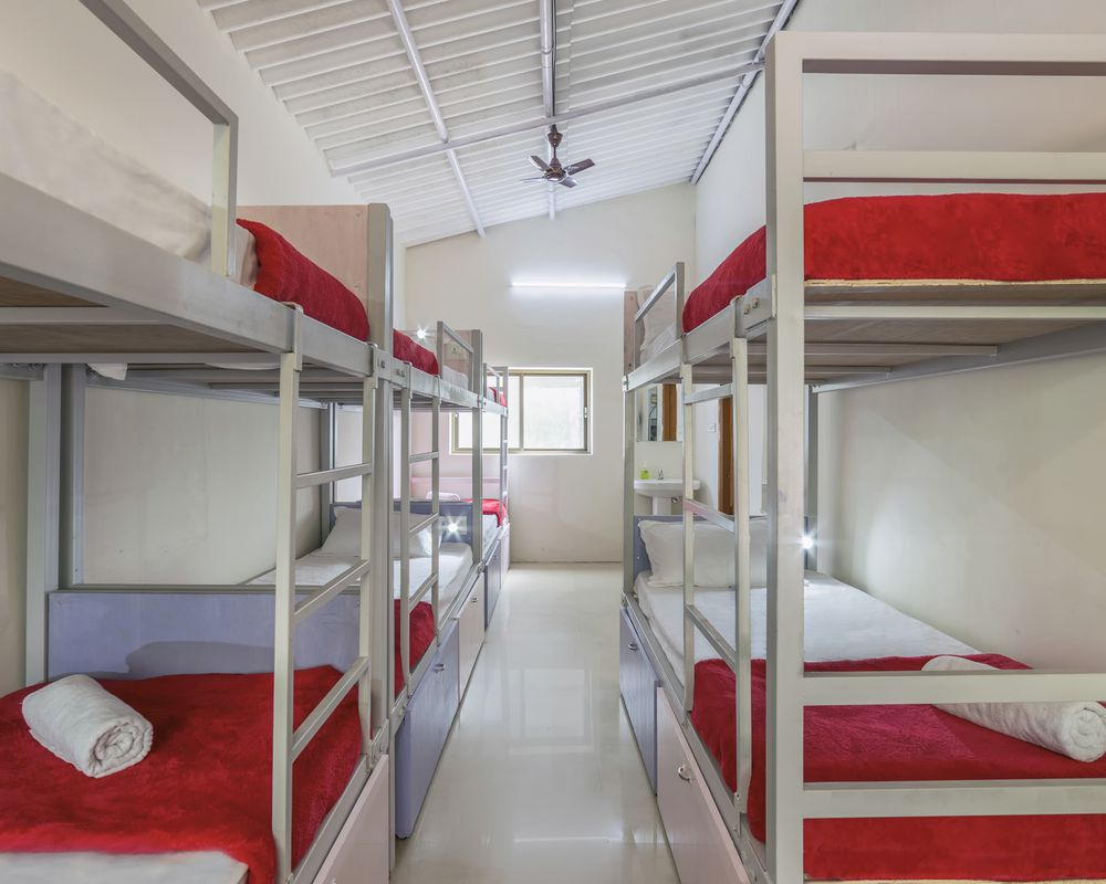 Zostel Chikmagalur Top Rated Branded Hostel In Chikmagalur