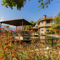 Garden with small pond at zostel pokhara