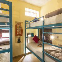 6 bed female dorm at Zostel Jaisalmer