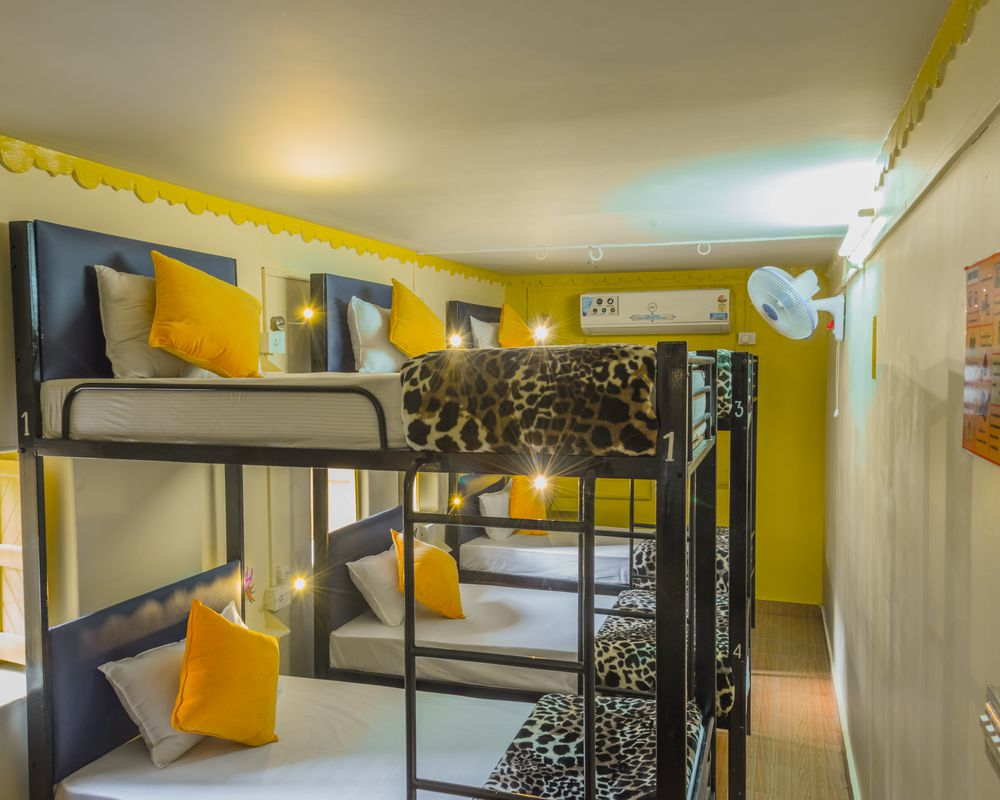 Zostel Jodhpur Top Rated Branded Hostel In Jodhpur