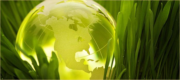 eco-friendly_img2