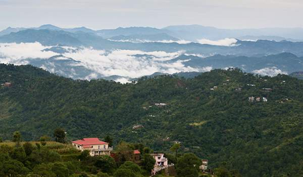 Kasauli_view