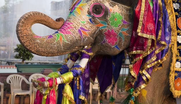 gangaur-festival-in-rajasthan-preset3