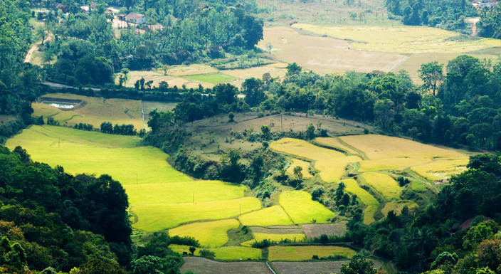 Coorg012_704x385