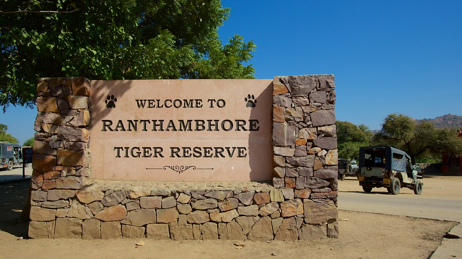Ranthambore-National-Park-98080