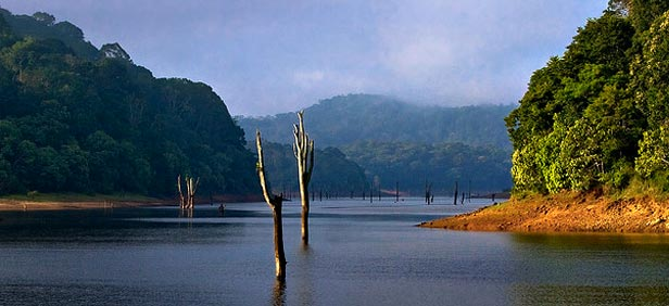 periyar-national-park-lake-kerala