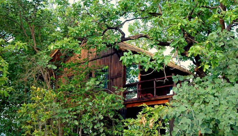 Tree-House-Hideaway