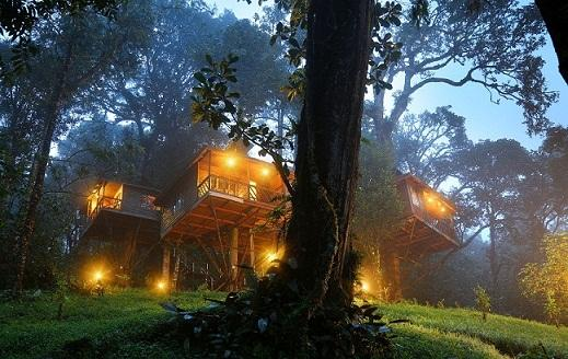 nature-zone-resort-munnar-exterior-29856266g