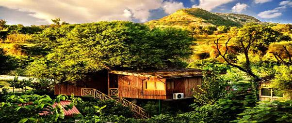 treehouse-13