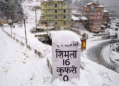 shimlaonline.in